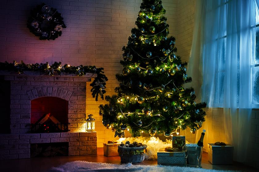 Saiba como escolher a melhor árvore de Natal para a sua casa